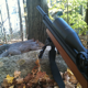 Where in NYS can I legally go hunting for wild boar/coyote? - last post by shawnhu