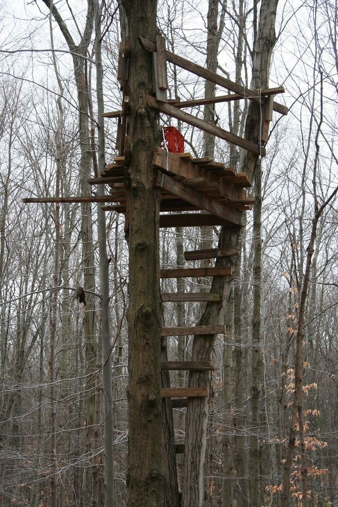 Tree stands general hunting hunting new york ny for Deer stand steps