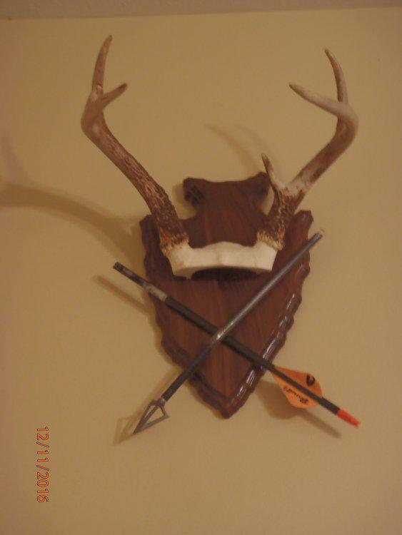 Buck mount.JPG