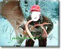 weber_buck_2003-1.jpg