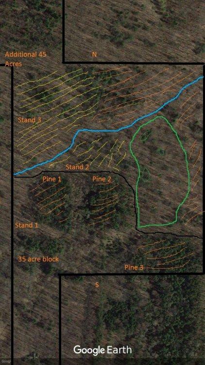 land2.jpg