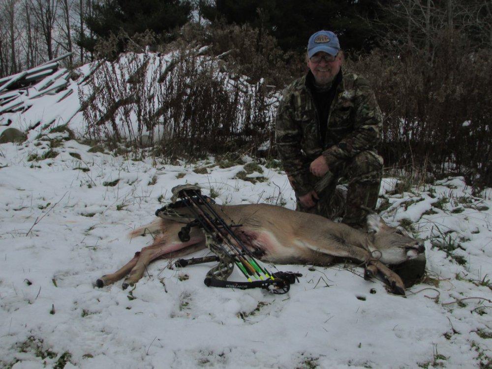 Oak with Doe taken with arrow 11.14.18 .jpg