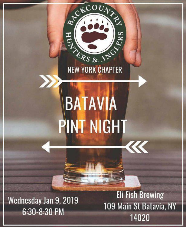 2018 Batavia Pint Night.jpg
